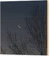 Morning Moon Wood Print