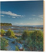 Morning On The Beach Wood Print by Randy Hall
