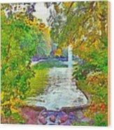 Mirror Lake. The Ohio State University Wood Print