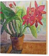 Morning Orchids Wood Print
