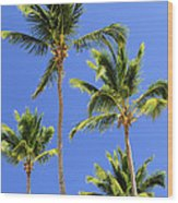 Morning Palms Wood Print