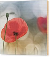 Morning Poppies Wood Print