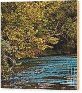Morning River Wood Print
