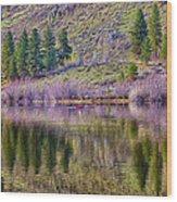 Morning Rowing Wood Print