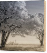 Morning Softness II - Blue Ridge Parkway Wood Print