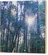 Morning Sun Rays Wood Print