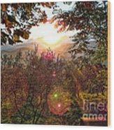 Morning Sunbeams Wood Print