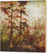Morning Sunrise Burst Of Color Wood Print