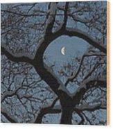 Morning Twilight Wood Print