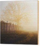 Morning Vineyard Wood Print by Shannon Beck-Coatney
