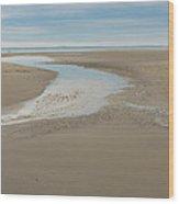 Morning Walk At Crane Beach Wood Print