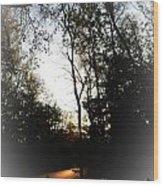 Morning Walk Wood Print by Jeffery Fagan