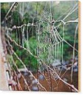 Morning Web Wood Print