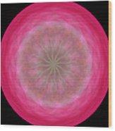 Morphed Art Globe 12 Wood Print by Rhonda Barrett