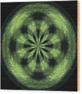 Morphed Art Globe 35 Wood Print