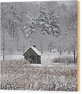 Morris Arboretum Mill In Winter Wood Print
