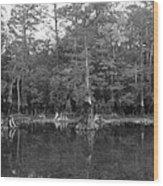 Morrison Springs Drought Wood Print