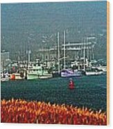 Morro Bay At A Distance Wood Print