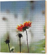 Mosaic Flower Wood Print