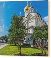 Moscow Kremlin Tour - 51 Of 70 Wood Print
