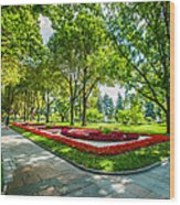 Moscow Kremlin Tour - 64 Of 70 Wood Print