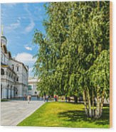 Moscow Kremlin Tour - 69 Of 70 Wood Print