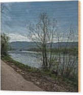 Moselle River Wood Print