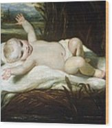 Moses In The Bullrushes Wood Print