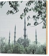 Mosque Behind Trees In Turkey Wood Print