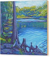 Moss And Cypress Wood Print