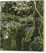 Moss And Stones By The Turquoise Forest Pond On A Summer Day No4 Wood Print