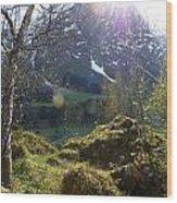 Moss And Sushine Wood Print