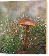 Moss Bokeh Wood Print
