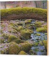 Moss Bridge Wood Print