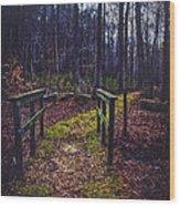 Moss Covered Path Wood Print