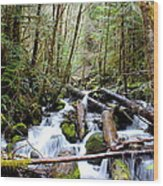 Moss Creek Wood Print