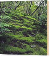 Moss Forest In Kyoto Japan Wood Print