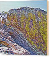 Moss On Giant Rocks Along Echo Canyon Trail In Chiricahua National Monument-arizona  Wood Print
