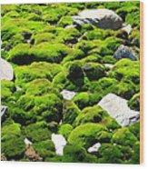 Mosscape Wood Print
