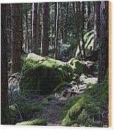 Mossy Boulders Wood Print