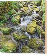 Mossy Creek Wood Print by Bob Jackson