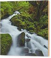 Mossy Creek Cascade Wood Print