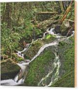 Mossy Creek Wood Print by Debra and Dave Vanderlaan