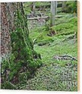Mossy Endevor Wood Print