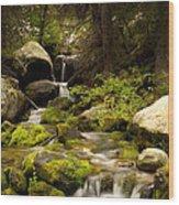 Mossy Falls 1 Wood Print