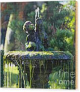 Mossy Fountain Wood Print
