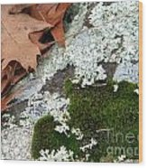 Mossy Leaves Wood Print