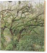 Mossy Oak Wood Print
