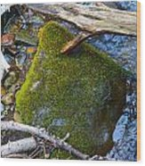 Mossy Rock Wood Print