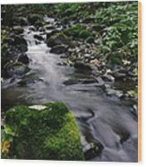 Mossy Rock Streamside Wood Print